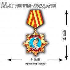 Магнит медаль Лучшему врачу